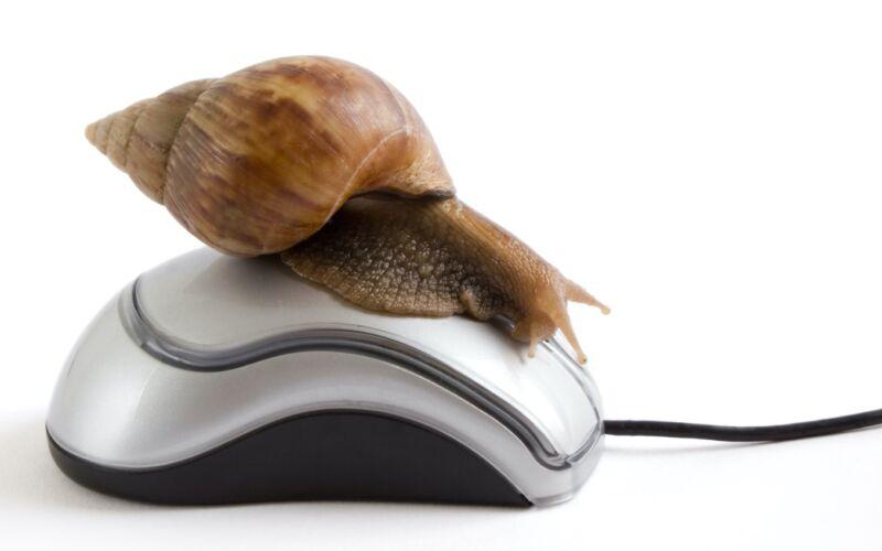 Un caracol que descansa sobre un mouse de computadora para ilustrar el servicio lento de Internet.