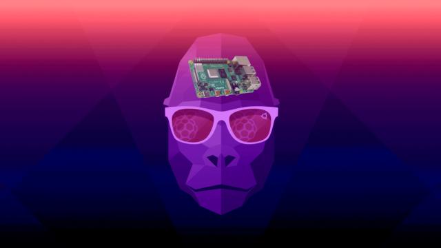 "Ubuntu Groovy Gorilla adds Raspberry Pi as a ""first class citizen"""