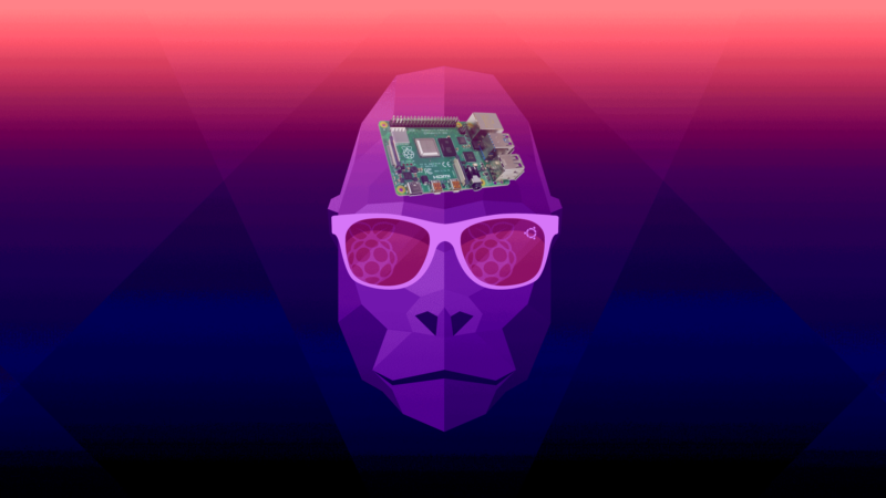 This Groovy Gorilla doesn't just have a Raspberry Pi 4 on his mind, he's got a Raspberry Pi 4 <em>as</em> his mind.