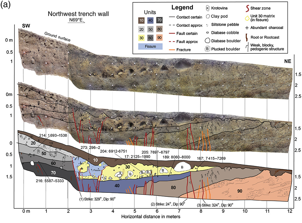 Here's one wall of the trench across the fault, with the layer relationships identified by the researchers.