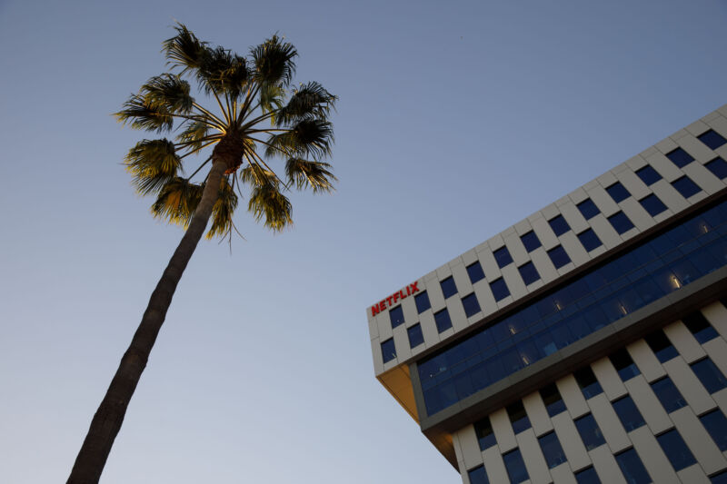 Netflix's Los Angeles office looms above a hapless palm tree.