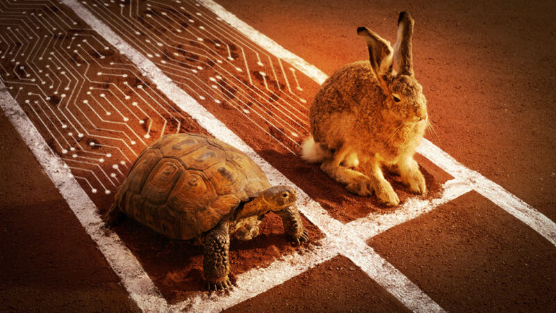 A tortoise and a hare are on a racetrack.