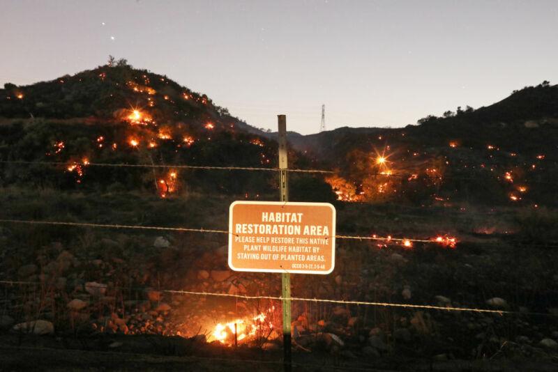 آتش سوزی شدید در جنگل یکی از تأثیرات آب و هوایی مربوط به سالهای گرم اخیر بوده است.