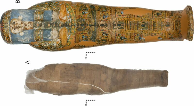 Ancient embalmers used mud to hold a damaged mummy together