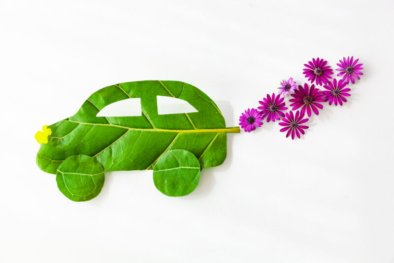 A picture of a car made out of a leaf, with flowers coming out of the tailpipe