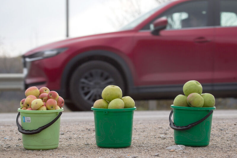 We don't know what the Apple Car will look like, so here's a picture of some apples and a car.