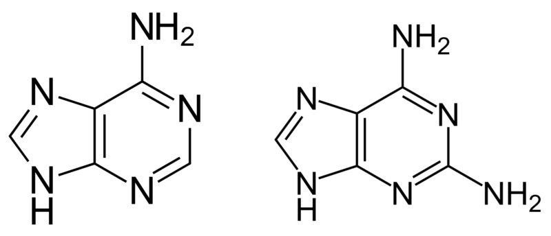 Image of two chemical structures.