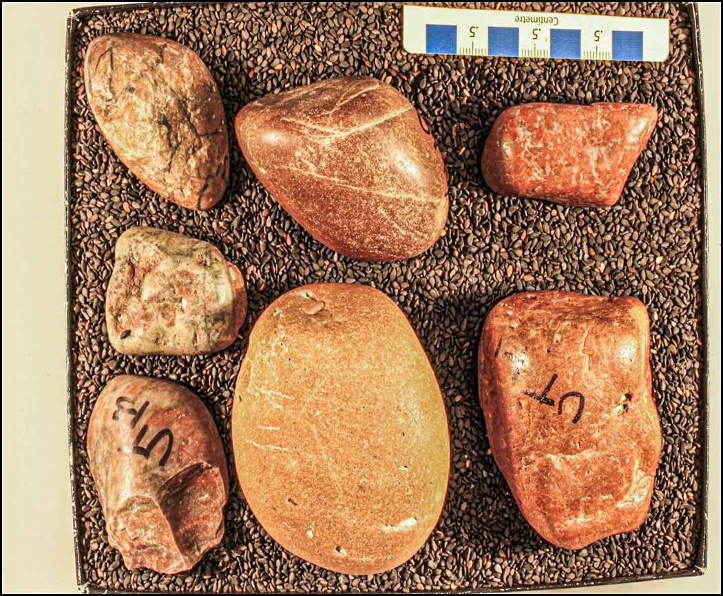 Stones that once resided in the digestive tract of giant sauropods.