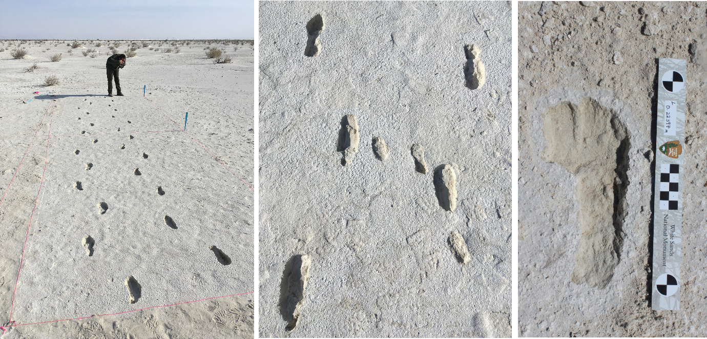 Fossilized human footprints at White Sands.