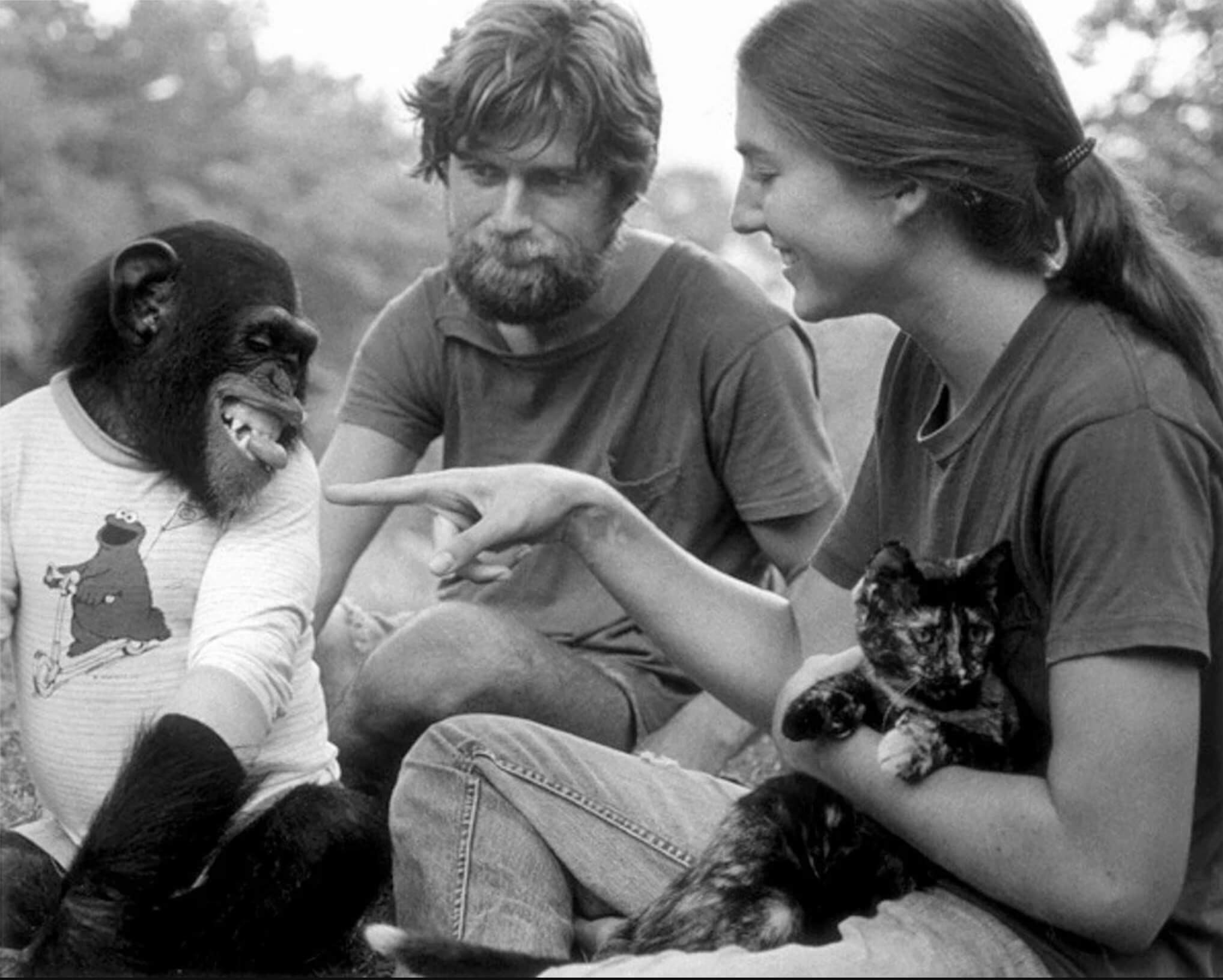 Nim Chimpsky and two of his human instructors in this still image from the HBO documentary <em>Project Nim</em>.