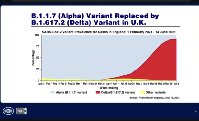 Graph showing rise of Delta variant in the UK.