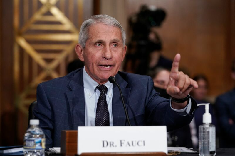 Dr. Anthony Fauci, director of the National Institute of Allergy and Infectious Diseases, during a Senate committee hearing on Capitol Hill in Washington, DC, on July 20, 2021.