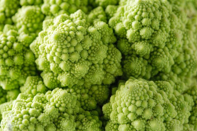 Macro-photo of green Romanesco cauliflower showcases the vegetable's striking fractal pattern.