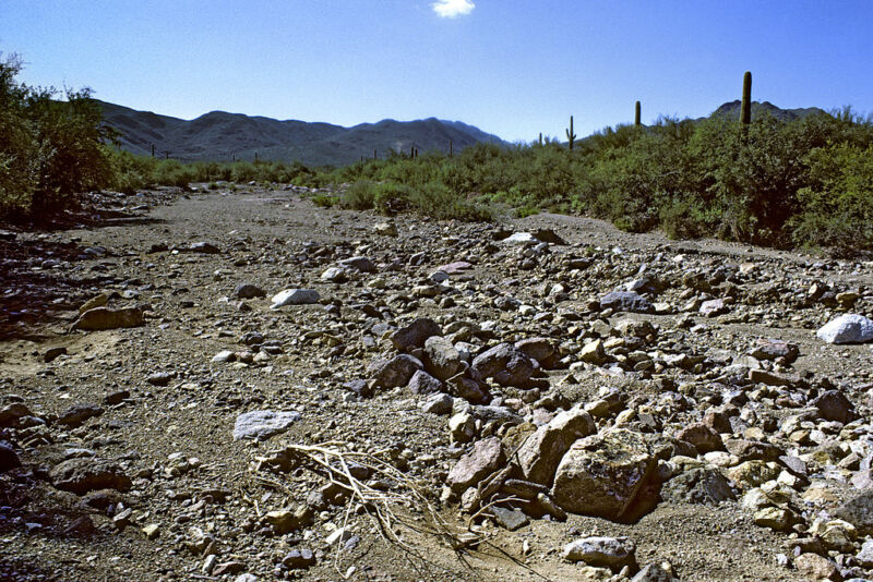 Image of a waterless stream bed.