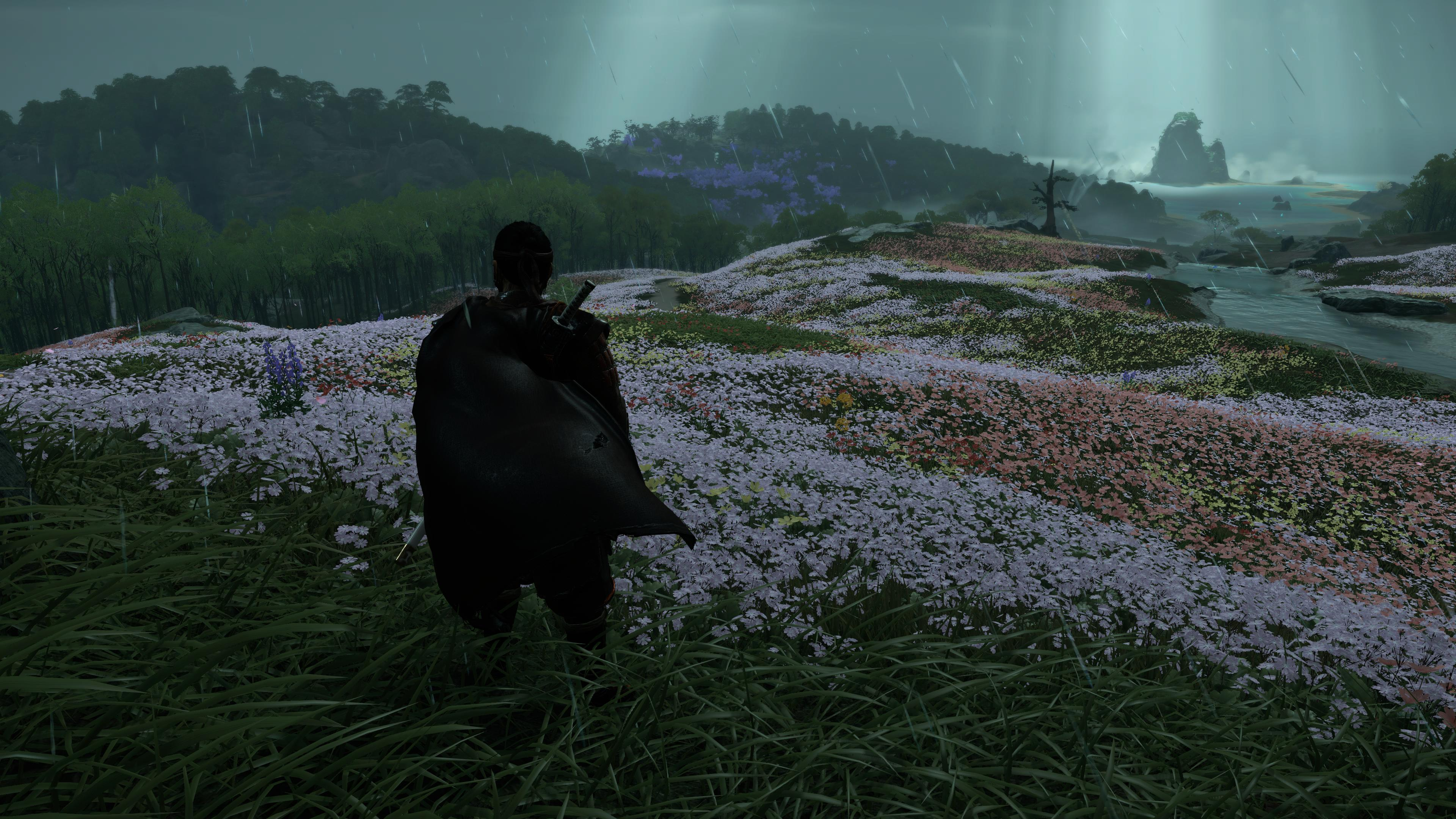 An absolutely massive flower field stretches to the horizon.