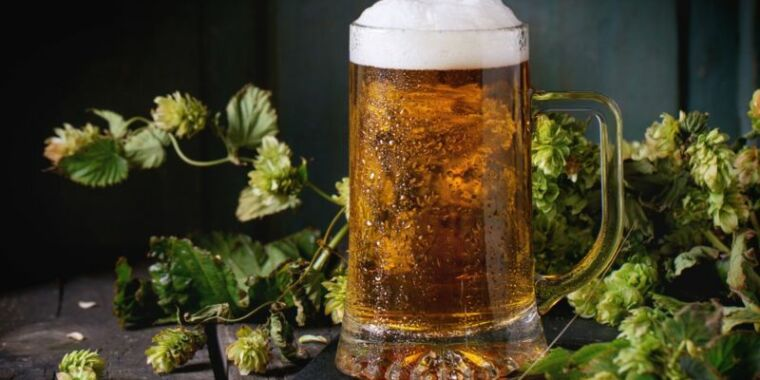 People have been brewing beer for millennia, and the basic chemistry of fermentation is well understood. But thanks to advanced analytical techniques,