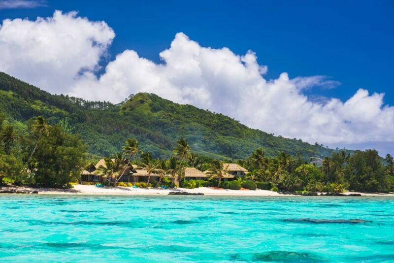 A lush tropical island.