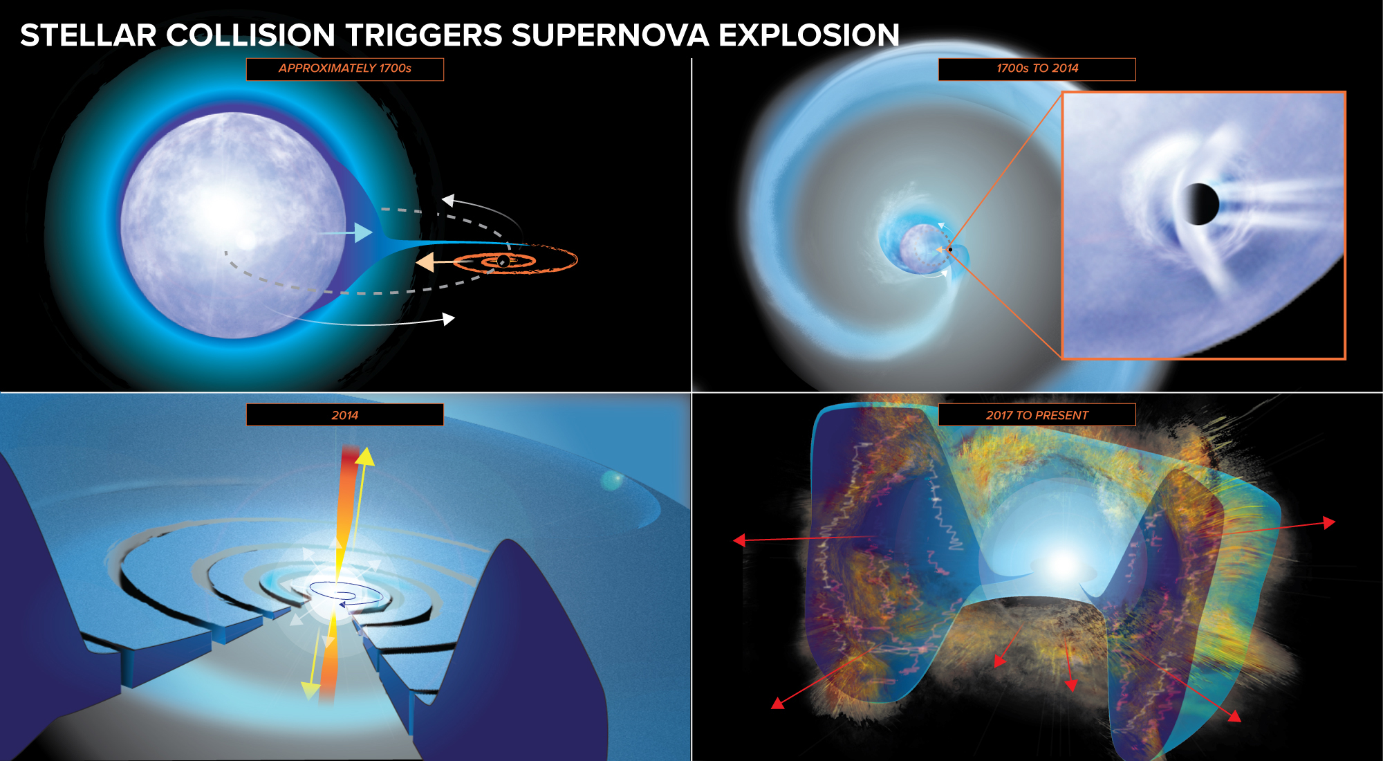 The timing of events. In the upper panels, a black hole or neutron star strips off the outer layers of a star, creating a disk of material around it. In the lower panels, the black hole disrupts the star's core, setting off a supernova that sends debris into the gas ejected earlier.