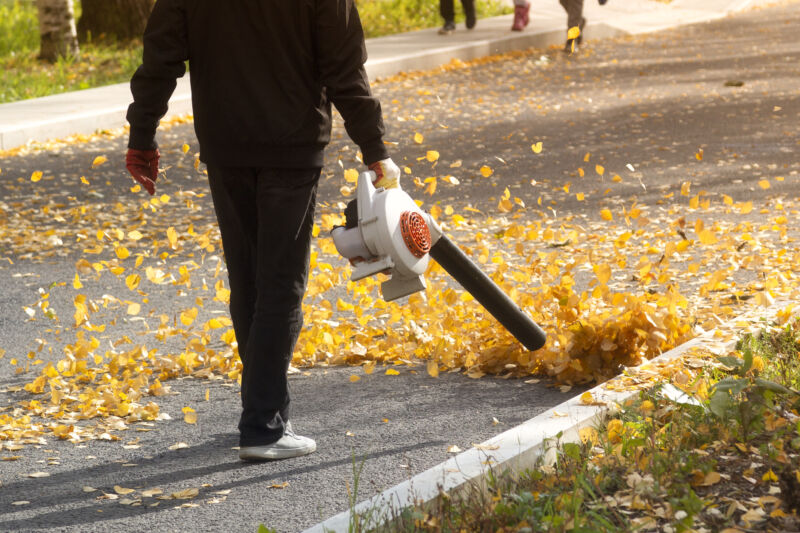Gas-powered lawn mowers, leaf blowers to be banned under new California law