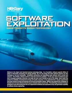 HBGary white paper on exploiting software