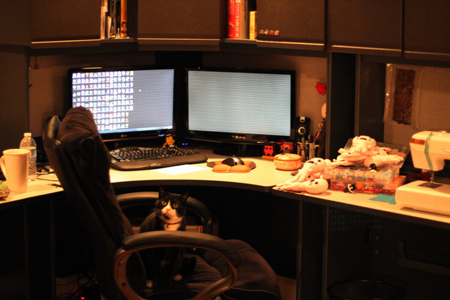 My office where I do all my actual work. My wife is usually set up next to me with her sewing machine doing her plush work.