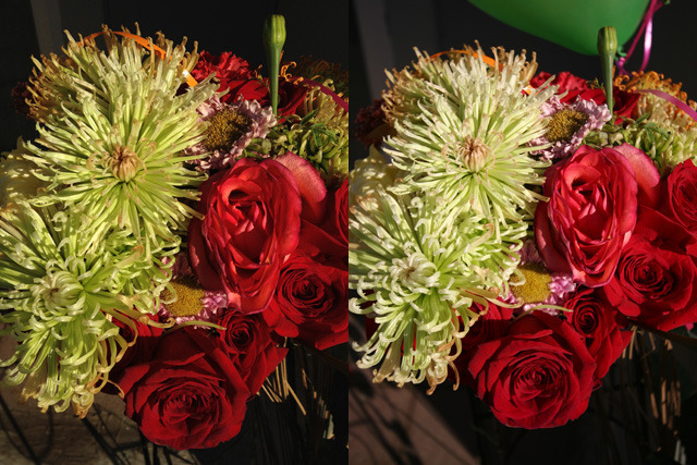 Left: iPhone 4S. Right: Canon 20D, 1/1000 f/4.5 ISO100.