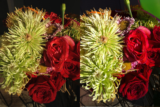 Left: iPhone 4S, 1/3500 f/2.4 ISO80. Right: iPhone 4, 1/1150 f/2.8 ISO64.