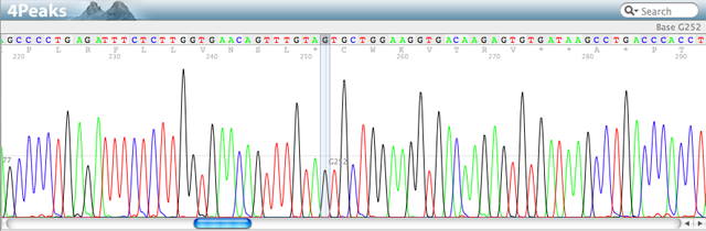A Sanger sequencing trace file
