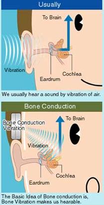 audiobone2.png