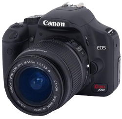 Digital SLRs have enjoyed a recent uptick in popularity