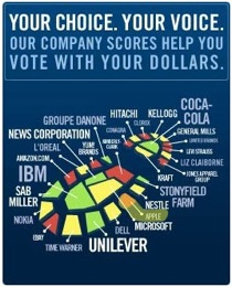 """The """"carbon footprint"""" of many top companies. From: Climate Counts."""