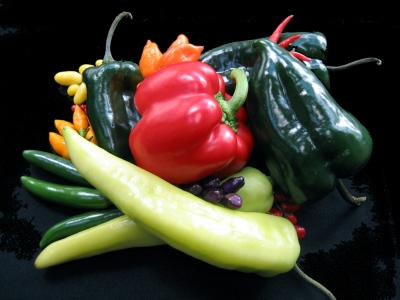Caption: The photo shows four of the five domesticated species of peppers in the Americas. Capsicum annuum, C. baccatum, C. chinense, and C. frutescens. Modern peppers like these were used as comparative material to identify the chili microfossils. Credit: Linda Perry, Smithsonian's National Museum of Natural History