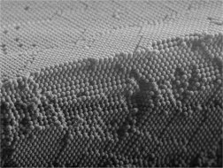 Colloidal crystal, image credit to Materials Science and Technology of Polymers Group, University of Twente