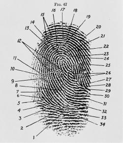 Csi Fingerprinting And Drug Detection In One Ars Technica