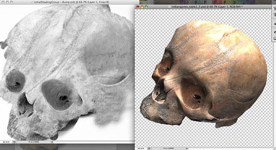 3D skull textures