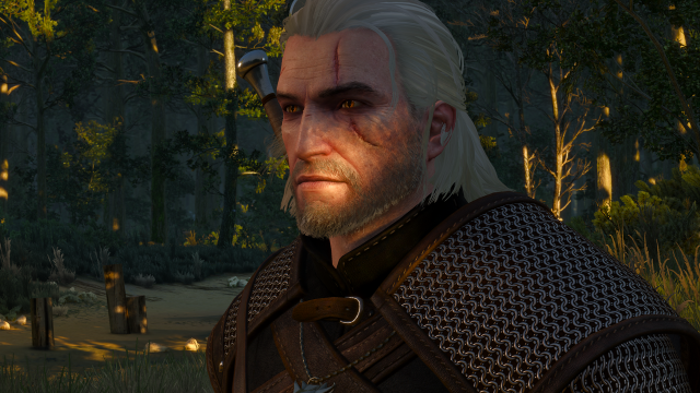 Geralt's luscious locks are causing trouble for AMD players.