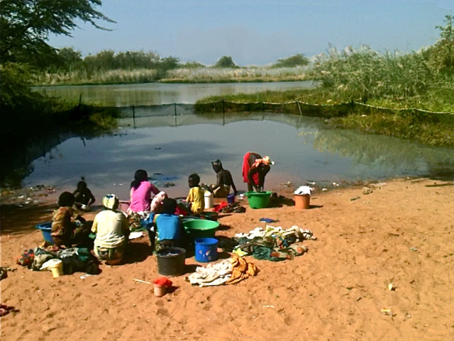 The village water point of Lampsar, Senegal with the mesh fence installed to keep the prawns on site, eating snails.