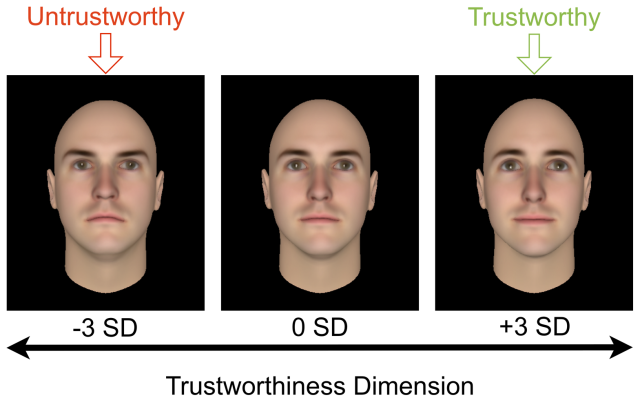 Faces used in a different study. This research found that people act on their ratings of how trustworthy faces are, even when they have other information about a person's past behaviour.
