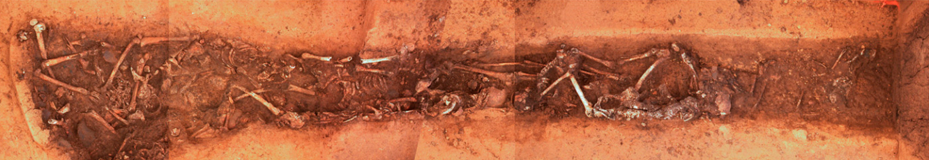 Composite image of the Linear Pottery culture mass grave of Schöneck-Kilianstädten, Germany