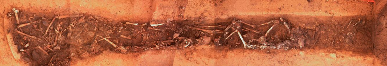 Composite image of the Linear Pottery culturemass grave of Schöneck-Kilianstädten, Germany