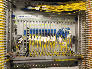An ADVA FSP 3000, connecting the landing site to other terrestrial customers and data centres.