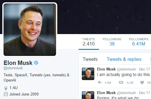 Image result for elon musk twitter profile