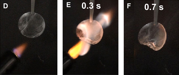 Digital photographs showing the flammability of the TPP@PVDF-HFP separator wetted by the electrolyte. The respective times, counted from the time when the electrolyte started to burn, are indicated in each picture. The diameter of the separator is 1.6 cm.