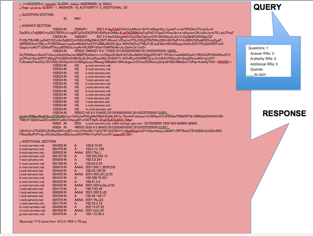 """A comparison of the payloads of a DNS """"root hint"""" query and its response. Not all data shown."""