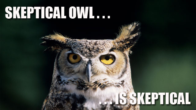 skeptical_owl-ars-thumb-640xauto-20444.jpg